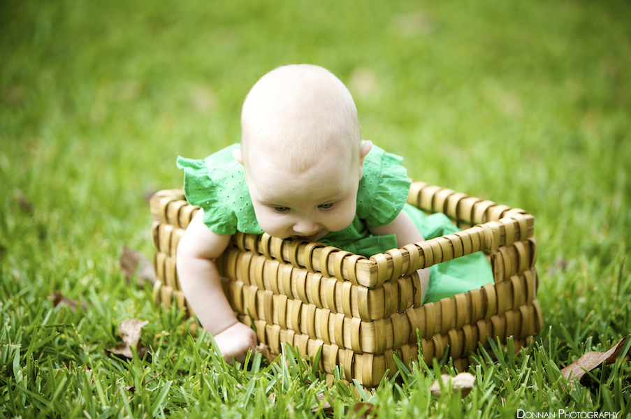 Mmm, basket in my mouth and grass in my hands!