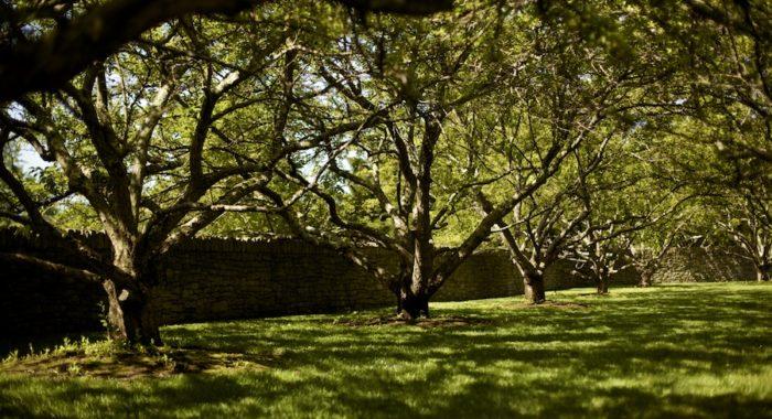 Gainsborough Farm