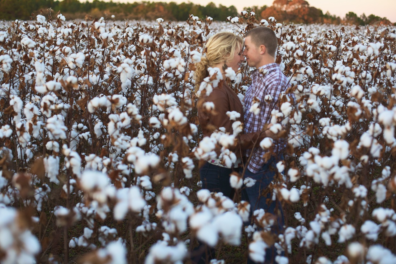 engaged-brooke-nathan-cotton-fields-countryside 028