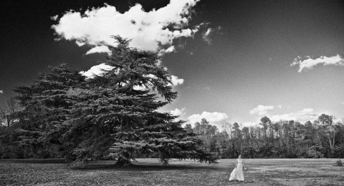Lauren's Redcliffe Plantation Bridal Session