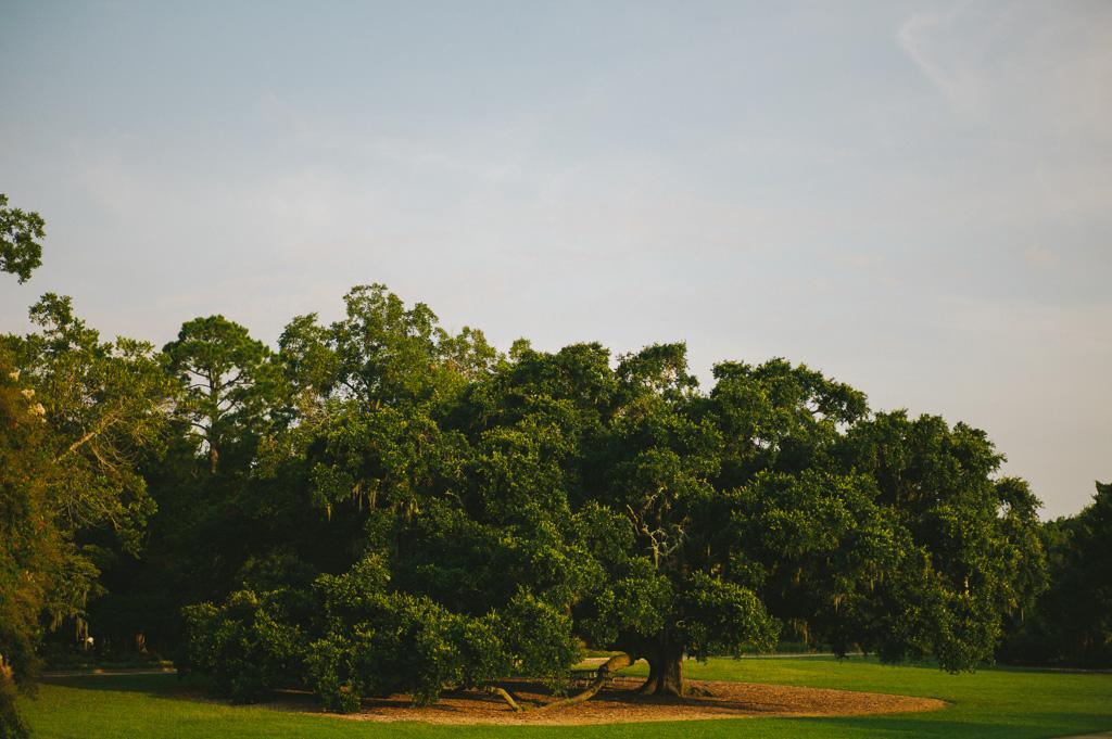 charleston-south-carolina-hampton-park-donnan-photo-00013