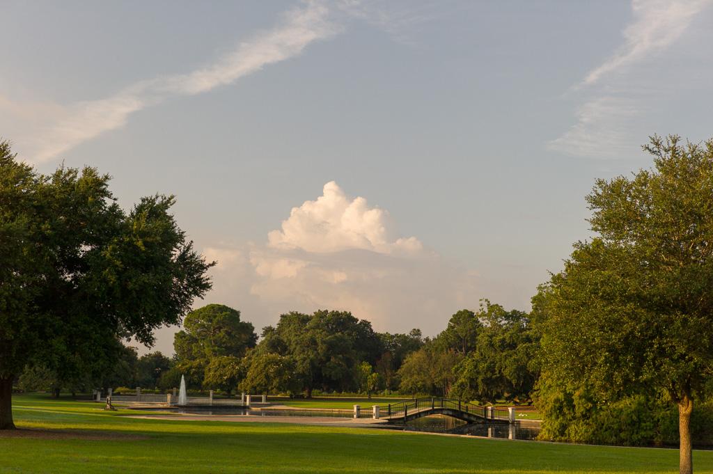 charleston-south-carolina-hampton-park-donnan-photo-00014