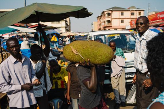 Jackfruit · Kampala ·Uganda
